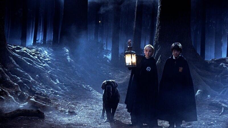 Harry Potter: Y La Piedra Filosofal - Image - Imagen 2