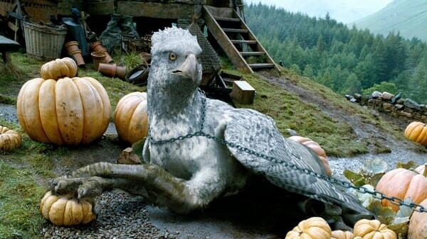 Harry Potter Y El Prisionero De Azkaban - Image - Imagen 9