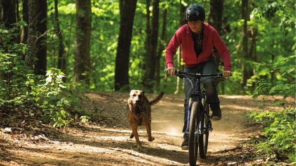 Max y Justin en bicicleta en Max