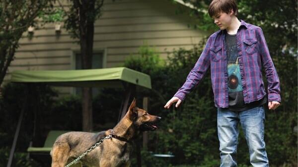 Max y Justin en la casa en Max