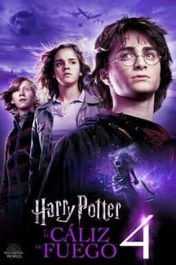Harry Potter Y El Cáliz De Fuego - Key Art